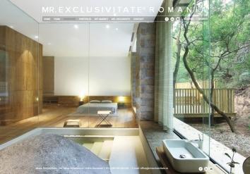 Portofolio Mr. Exclusivitate - Real estate management website